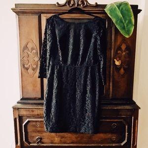 J. Crew Black Natalia Dress in Leavers Lace